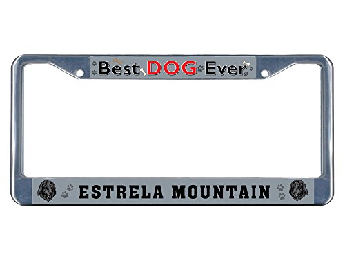 estrela-mountain-dog-best-dog-ever-chrome-metal-license-plate-frame-tag-border