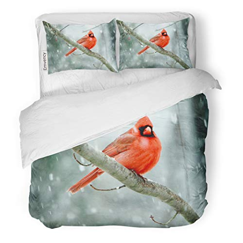 Emvency Decor Duvet Cover Set King Size Red Birds Cardinals in Late Spring Snowstorm Nashville Tennessee Cold 3 Piece Brushed Microfiber Fabric Print Bedding Set -