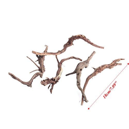 Driftwood Stump - 7