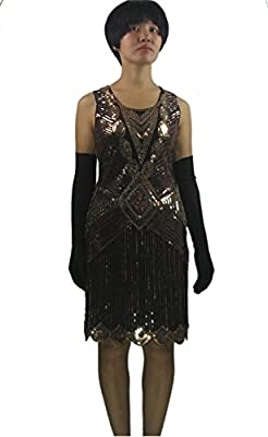 Whitewed 1920s 20's Gold Digging Flirty Flapper Gangsters Theme Dress Costume