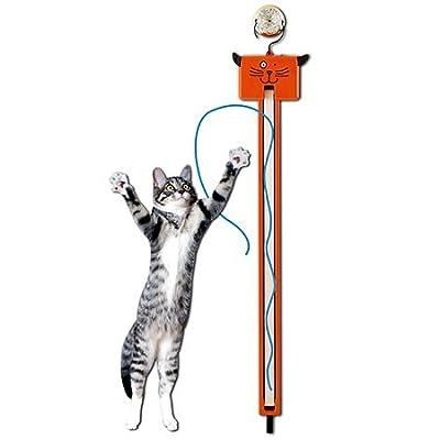 Moody Pet Fling-Ama-String from Moody Pet