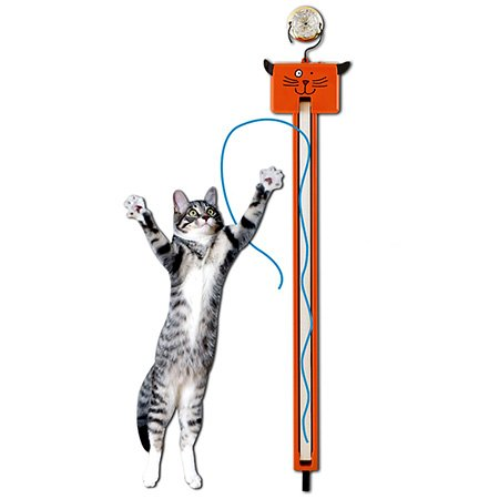 Top recommendation for cat toys string
