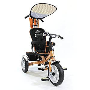 4in1 Lexx Trike VIP Smart Kid's Tricycle 3 Wheel Bike Removable Handle & Canopy NEW GOLD