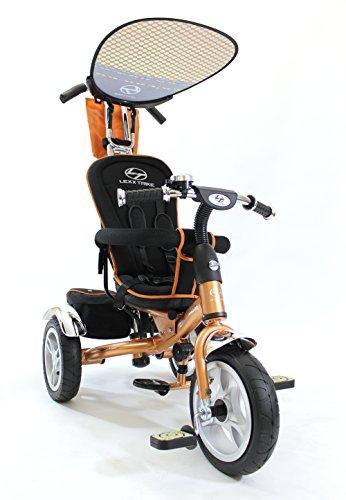 Canopy Trike - 3