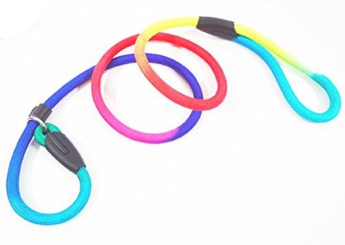 colorful dog leash - 9