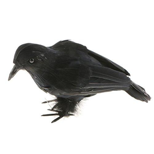 Feathered Witch - Homyl Lifelike Size Full Body Foam Fake Black Feathered Crows Birds Ravens Ornaments Halloween Holiday Decor Ornaments - #1 Black