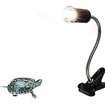 Amazon Com Hoke Flexible Clamp Lamp Fixture For Reptiles Terrarium Habitat Lighting Amp Heat