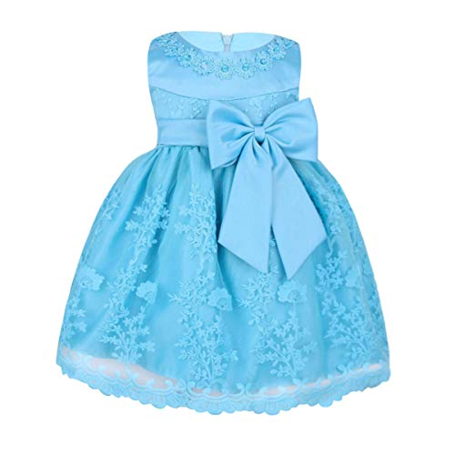 MSemis Baby Girls Embroidered Flower Dresses Christening Baptism Party Formal Dress Sky Blue 12-18 Months -