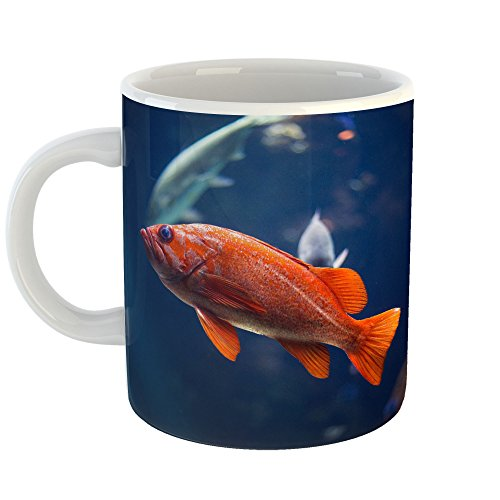 Westlake Photography   Coffee Cup Mug   Alaska Fish   Modern Picture Photography Artwork Home Travel Office Birthday Gift   11Oz  59D E49
