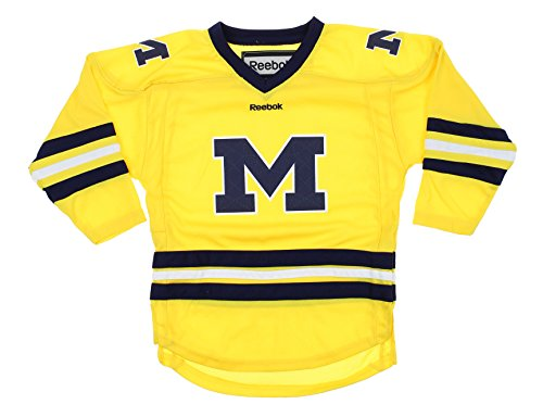 Michigan Wolverines NCAA Little Boys Kids (4-7) Replica Hockey Jersey, Yellow