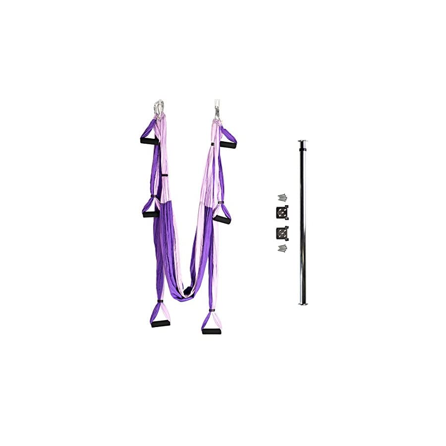 Bundle 2 Items: Yoga Trapeze & Door Mount Bar [Bundle] Purple By YOGABODY with Free DVD