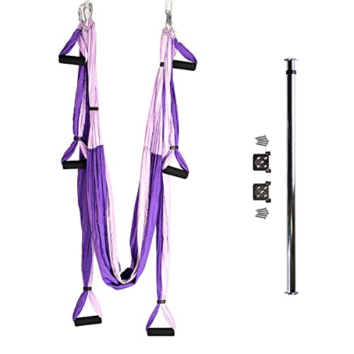Bundle - 2 Items: Yoga Trapeze & Door-Mount Bar [Bundle] - Purple By YOGABODY - with Free DVD by YOGABODY