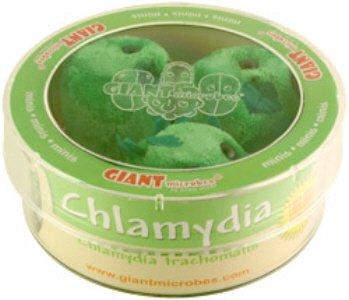 Giant Microbes Chlamydia (Chlamydia trachomatis) Petri Dish