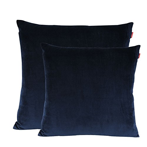 Shinnwa Velvet Super Soft Decorative Throw Pillow Case Solid Twin Side Cushion Covers for Sofa, 18