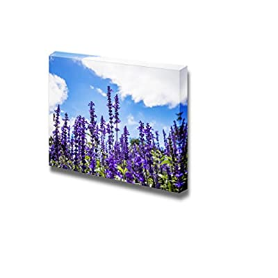 Canvas Prints Wall Art - Beautiful View Lavender Flower Under Blue Sky | Modern Wall Decor/Home Decoration Stretched Gallery Canvas Wrap Giclee Print & Ready to Hang - 12
