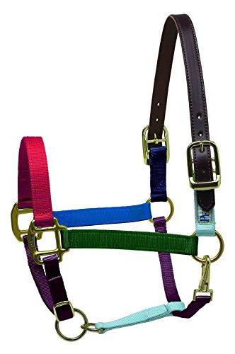 Perri's Premium Nylon Safety Halter, Horse, - Halter English