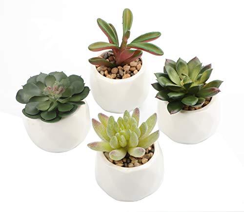 Artificial Succulent Plants. Set of 4 Fake Succulents in White Ceramic Pots. Faux Succulents Artificial as Desk Plants for Office and Succulent Centerpieces for Tables.