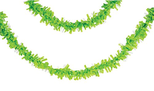 Creative Converting 315312 Tissue Fringe Garland 25' Fresh Lime