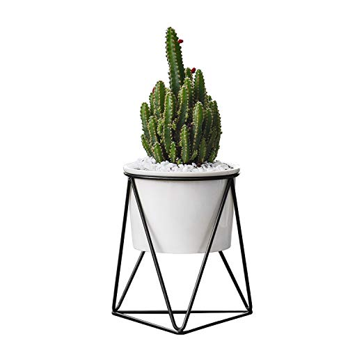 Flexzion Planter Pot - Small Modern Decorative White Ceramic Flower Vase Container Holder for Indoor Outdoor Garden House Plant Succulent Herb Mini Cactus Artificial Flower with Metal Iron Rack Stand ()