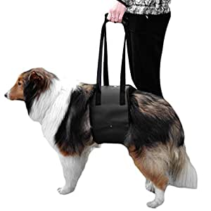 Amazon Com Dog Lift Support Harness With Handle For