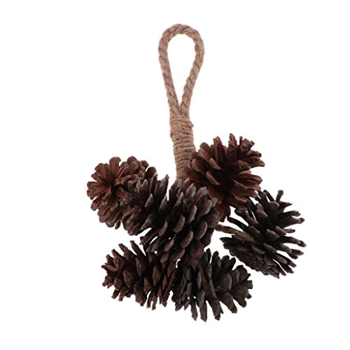 Parrot Natural Pine Nuts Toys Parrot Toys Parrot Supplies As Described ()