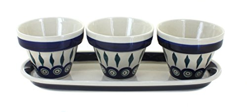 Pot Polish Flower (Polish Pottery Peacock Flower Pots with Tray)