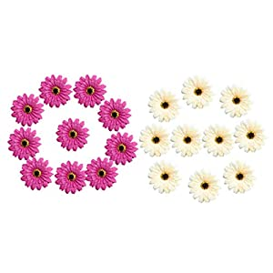 Fenteer 20x Daisy Flowers Heads Artificial Flowers Blossoms Daisies Home Decor Wedding DIY Accessories Purplish Red & Champagne 35