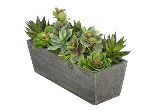 Artificial Succulent Garden in Grey-Washed Wood Ledge by House of Silk Flowers (Image #1)