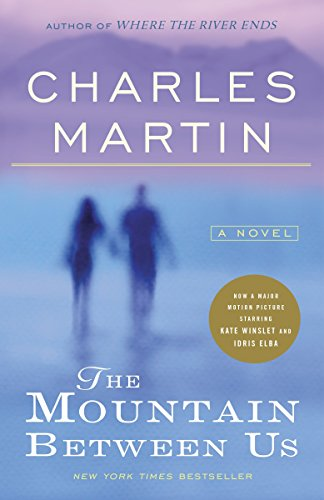 Books : The Mountain Between Us: A Novel