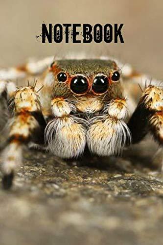 Notebook: Tarantula Spider Notebook