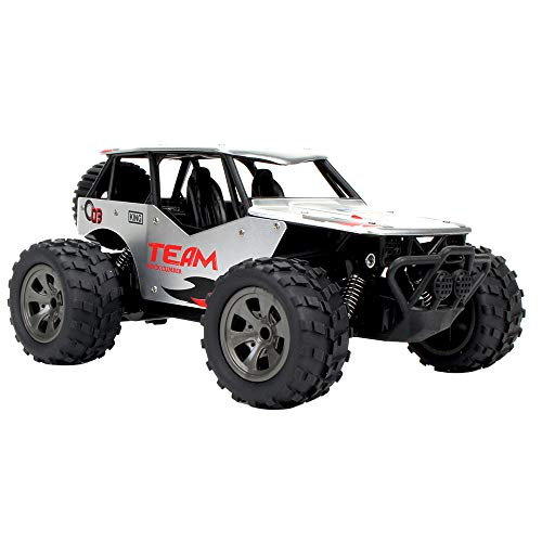 - FEDULK 1:18 2WD High Speed RC Racing Car Remote Control Truck Off-Road Buggy Toys Birthday Gifis for Kids(Silver)
