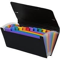 Viquel Rainbow Class - Trieur accordéon de bureau - Porte document 12 positions - Organisateur de bureau extensible - Trieur format chèque en plastique