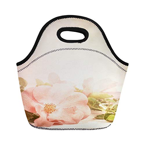 Semtomn Lunch Bags Pretty Pink Rose Leaves on Rustic Off White Board Neoprene Lunch Bag Lunchbox Tote Bag Portable Picnic Bag Cooler Bag