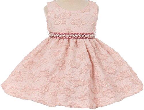 Little Baby Girls Embroidered Sequin Beaded Pearl Sash Infant Flowers Girls Dresses Blush M (C11B4)