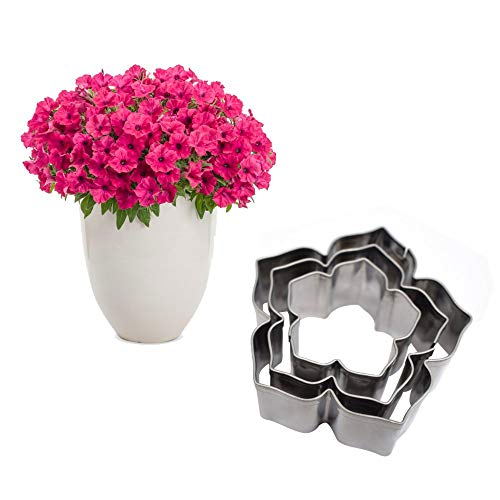 AK ART KITCHENWARE Petal & Leaf Stainless Steel Cutter Set Gum Paste Flower Making Tools for Decorating Cakes (Petunia Flower Cutters)