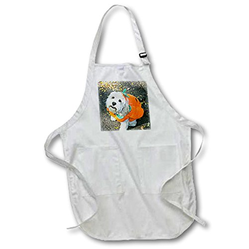 3D Rose Pet Halloween Contest at Thompkins Square Park-New York City Full Length Apron-with Pockets, 22 x 30, White -