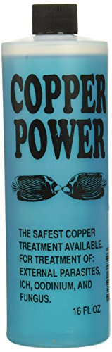 Copper Power (Endich) ACP0016B Blue Treatment for Marine Fish, 16-Ounce
