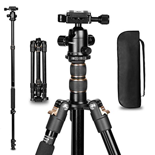 Lightweight Camera Tripod GWNNSH 55 Inches Compact Travel DSLR Tripod Monopod with 360° Panorama Ball Head,1/4 Quick Release Plate and Bag