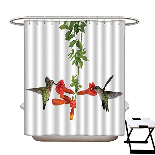 homecoco Hummingbirds Decor Anti Bacterial Shower Curtain Liner Two Hummingbirds Sip Nectar from a Trumpet Vine Blossoms Summertime Shower Curtain for ()