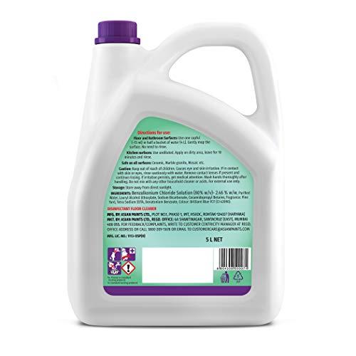 Asian Paints Viroprotek Ultra Disinfectant Floor Cleaner Pine- 5 L