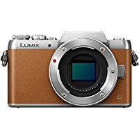 Panasonic Lumix G DMC-GF8 (Brown Body Only) (International Model) No Warranty