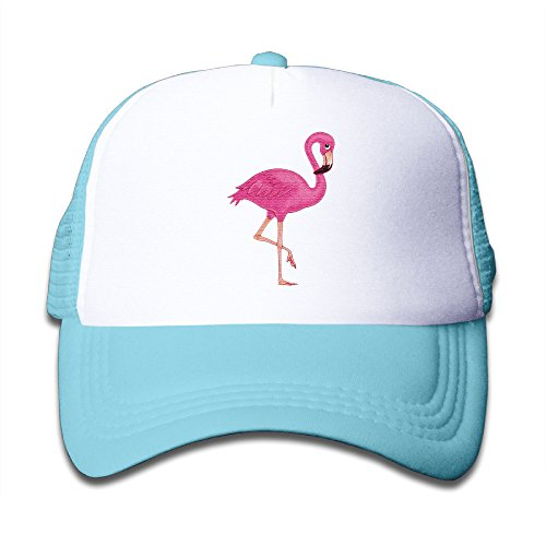 The Cute Beautiful Pink Flamingo Poster Vintage Snapbacks Trucker Hats For Youth