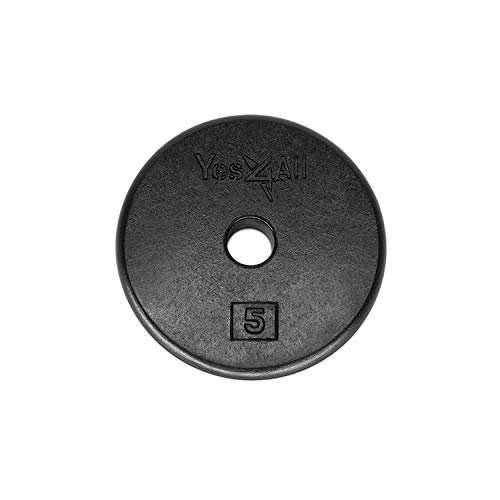 Yes4All 1-inch Cast Iron Weight Plates for Dumbbells - Standard Weight Disc Plates (5 lbs, Single)