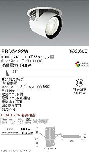 ENDO LEDダウンスポットライト 電球色3000K Ra95 埋込穴φ125mm 非調光 CDM-T70W相当 中角 ERD5492W(ランプ付) B07HQD7K5V
