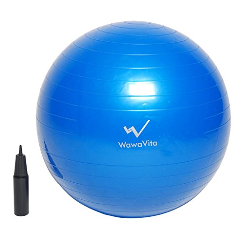 Wawavita Anti-Burst Gym Ball-Yoga Ball/Balance Ball/Fitness Ball, 65cm, Blue