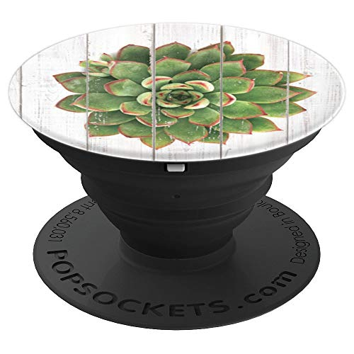 - Painted Succulents, Cell Phone Mount, Hand Holder Knob 6438D - PopSockets Grip and Stand for Phones and Tablets