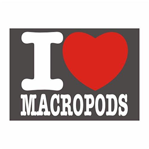 Idakoos - I love Macropod - Animals - St - Macropod Animals Shopping Results