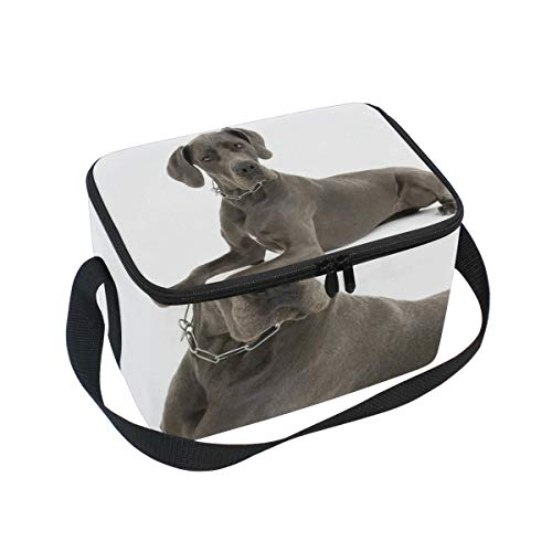 Lunch Bag Grey Great Dane Dog Womens Insulated Lunch Tote Zipper Kids Lunch ()