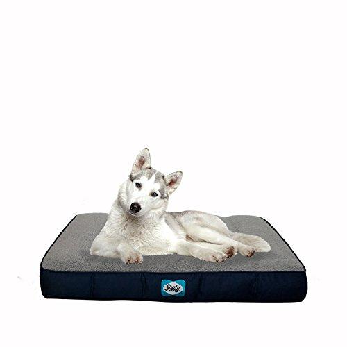 sealy-dog-bed-cozy-comfy-sherpa-bed-medium-navy-blue
