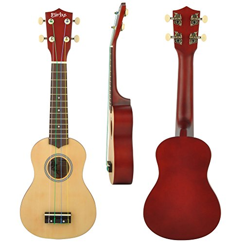 Soprano Rainbow Ukulele Beginner Pack-21 Inch w/ Gig Bag Fast Learn Songbook Digital Tuner All in One Kit - Image 1